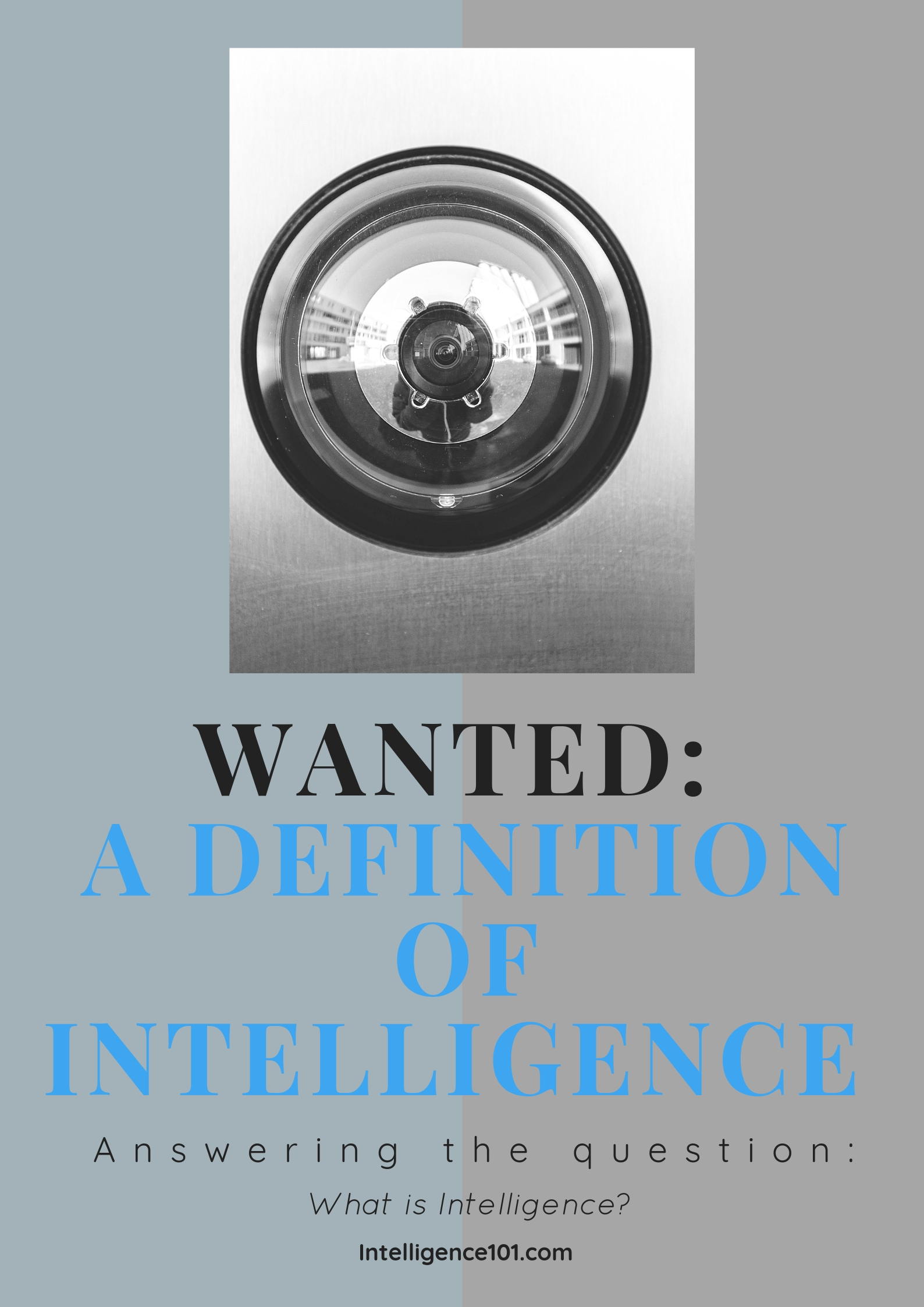Wanted: A Definition of Intelligence